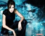 angelina jolie wallpapers 018 wallpapers