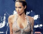 angelina jolie wallpapers 063 wallpapers