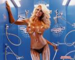 pamela anderson wallpapers 087 wallpapers