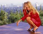 pamela anderson wallpapers 119 wallpapers