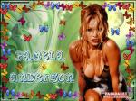 pamela anderson wallpapers 141 wallpapers