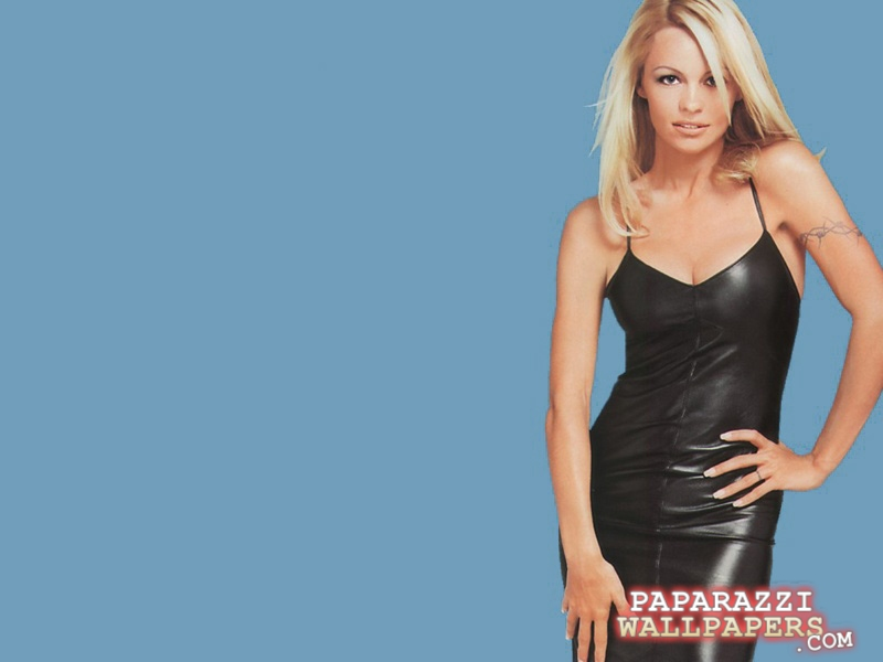 pamela anderson wallpapers 001
