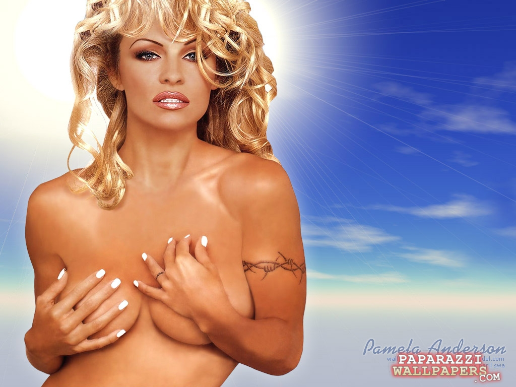 pamela anderson wallpapers 007