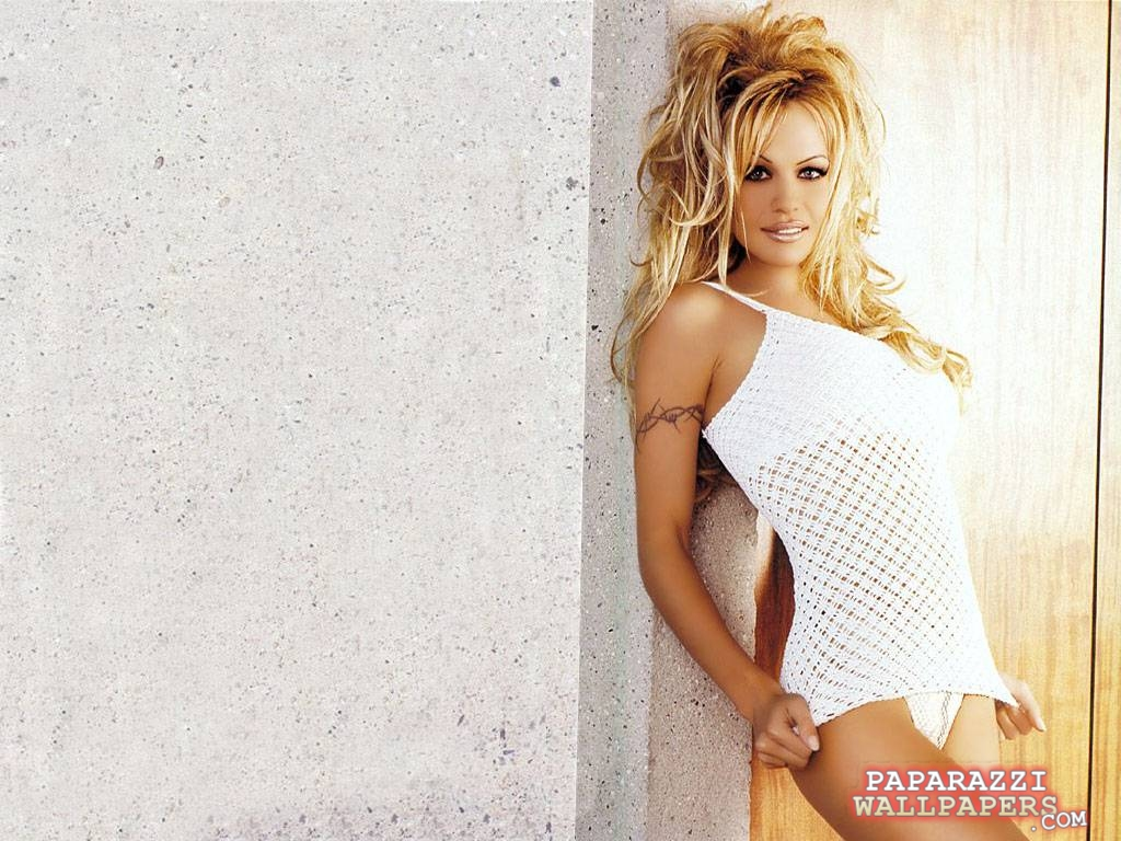 pamela anderson wallpapers 011