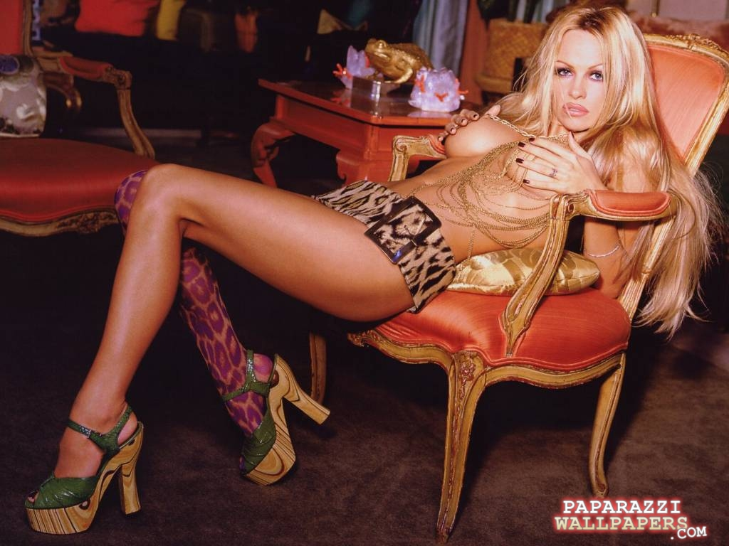 pamela anderson wallpapers 036