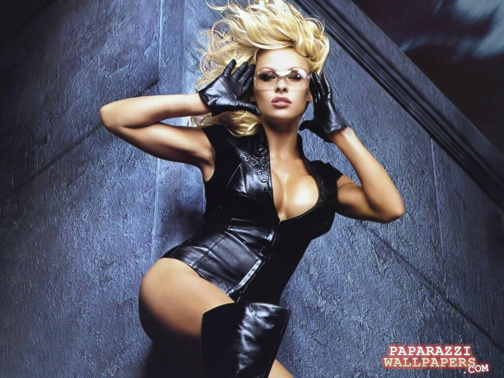 pamela anderson wallpapers 040