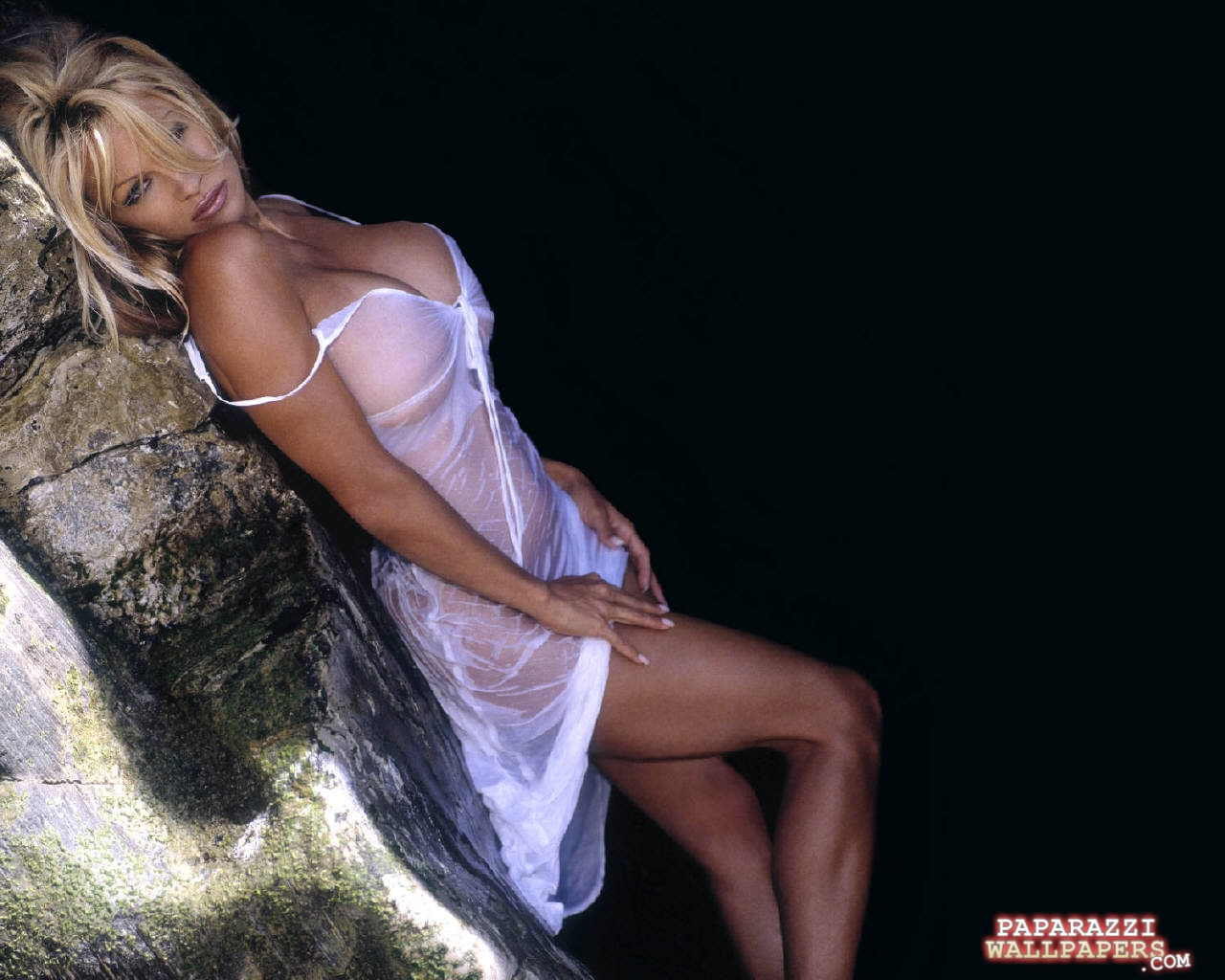 pamela anderson wallpapers 114