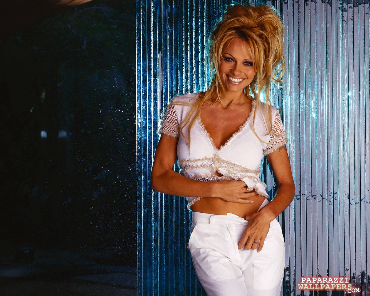 pamela anderson wallpapers 117