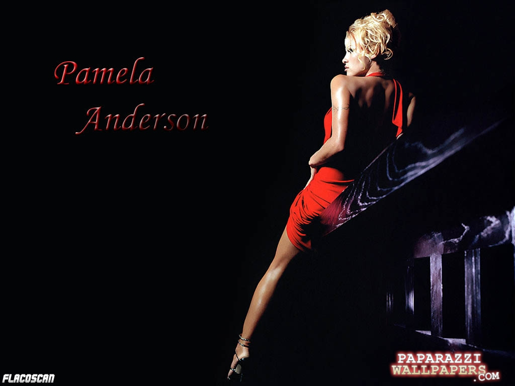 pamela anderson wallpapers 126