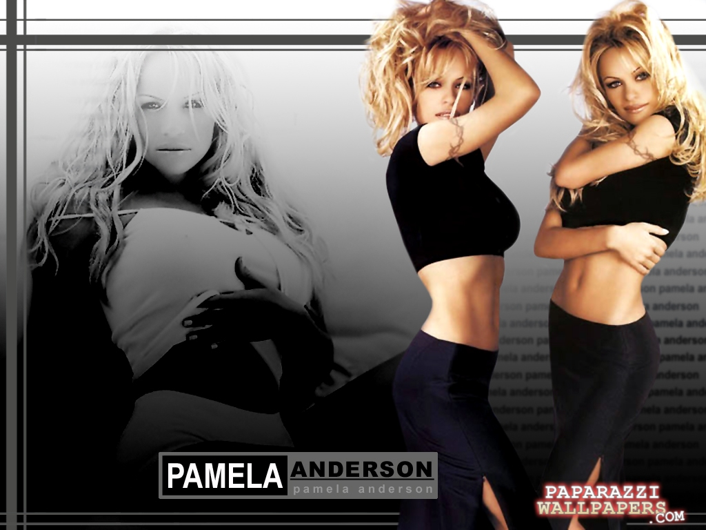 pamela anderson wallpapers 135