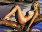 pamela anderson wallpapers 052 wallpaper
